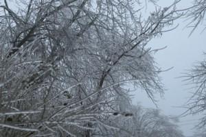 Macomb, Il icestorm
