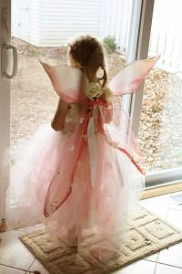 fairy-005